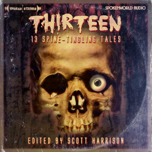 Thirteen - Front Cover